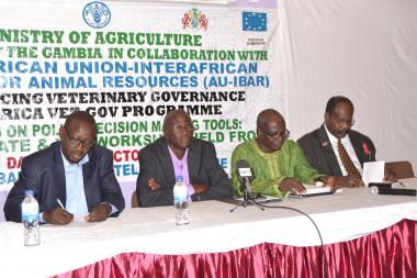 © 2015 AU-IBAR. From left to right: Dr Baboucarr Jaw (AU-IBAR), Mr Sheroffo Bojang, Permanent Secretary Ministry of Agriculture, Dr Duto Fofana, Director General of Livestock and Dr Henry Carrol, Chairman of the Policy Hub.