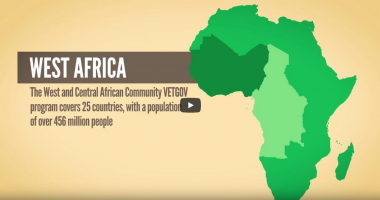 The West and Central African Community VET-GOV Program